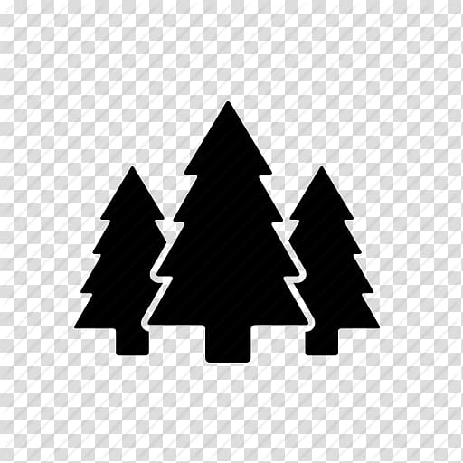 Forest icon clipart image library stock Three pine trees , U.S. National Whitewater Center Pinus contorta ... image library stock