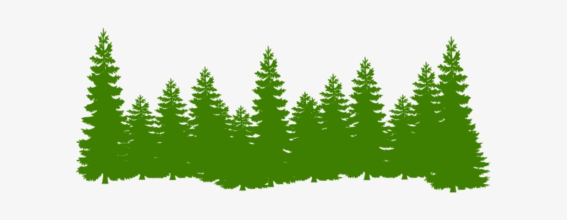 Forest trees clipart. How to set use
