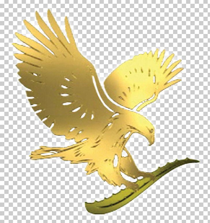 Forever living products clipart