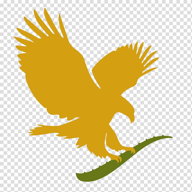 Forever living products clipart picture free library FOREVER LIVING PRODUCTS-Independent Distributor Cosmetics Forever ... picture free library