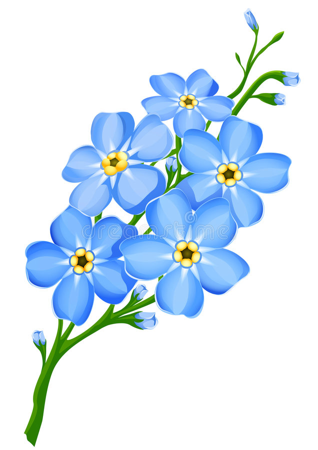 Nots station . Forget me not images clipart
