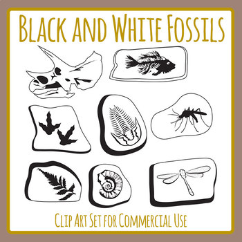 Fossil clipart black and white freeuse library Black and White Fossils Clip Art Set for Commercial Use freeuse library