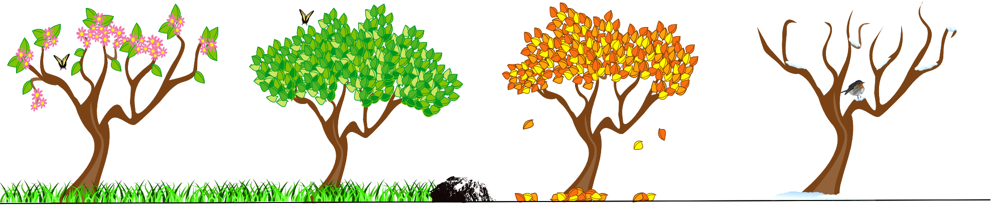 Four seasons tree clipart