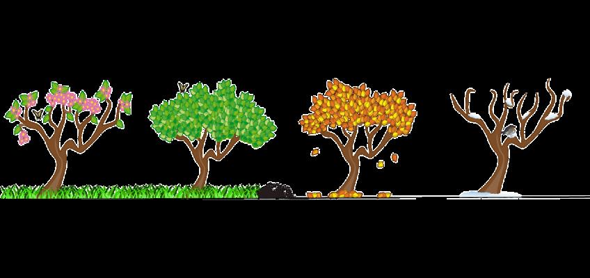 Four seasons tree clipart banner stock Blog – 9 Kids Later banner stock