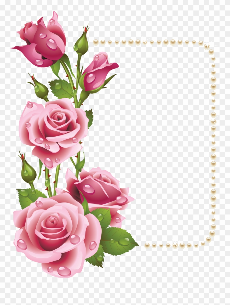 Frame rose clipart. Large transparent with pink