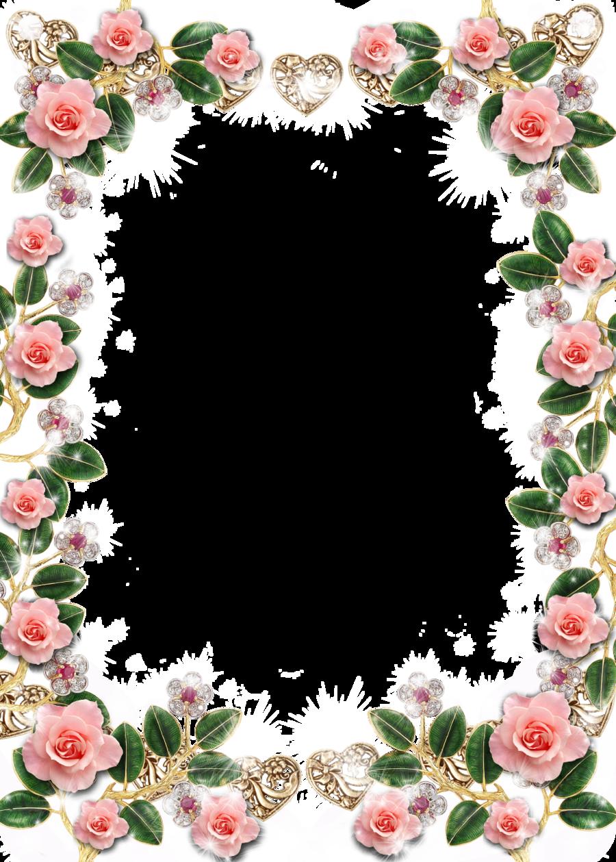Pink background flower transparent. Frame rose clipart
