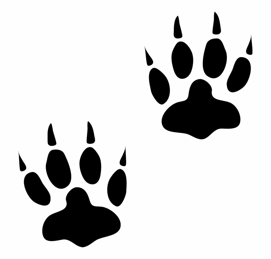 Free animal tracks clipart svg freeuse library Animal Tracks Png - Free Animal Track Clip Art, Transparent Png ... svg freeuse library