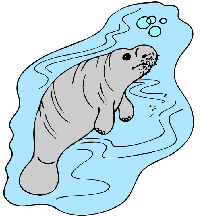 Free animated book clipart transparent download Manatee Clipart animated - Free Clipart on Dumielauxepices.net transparent download