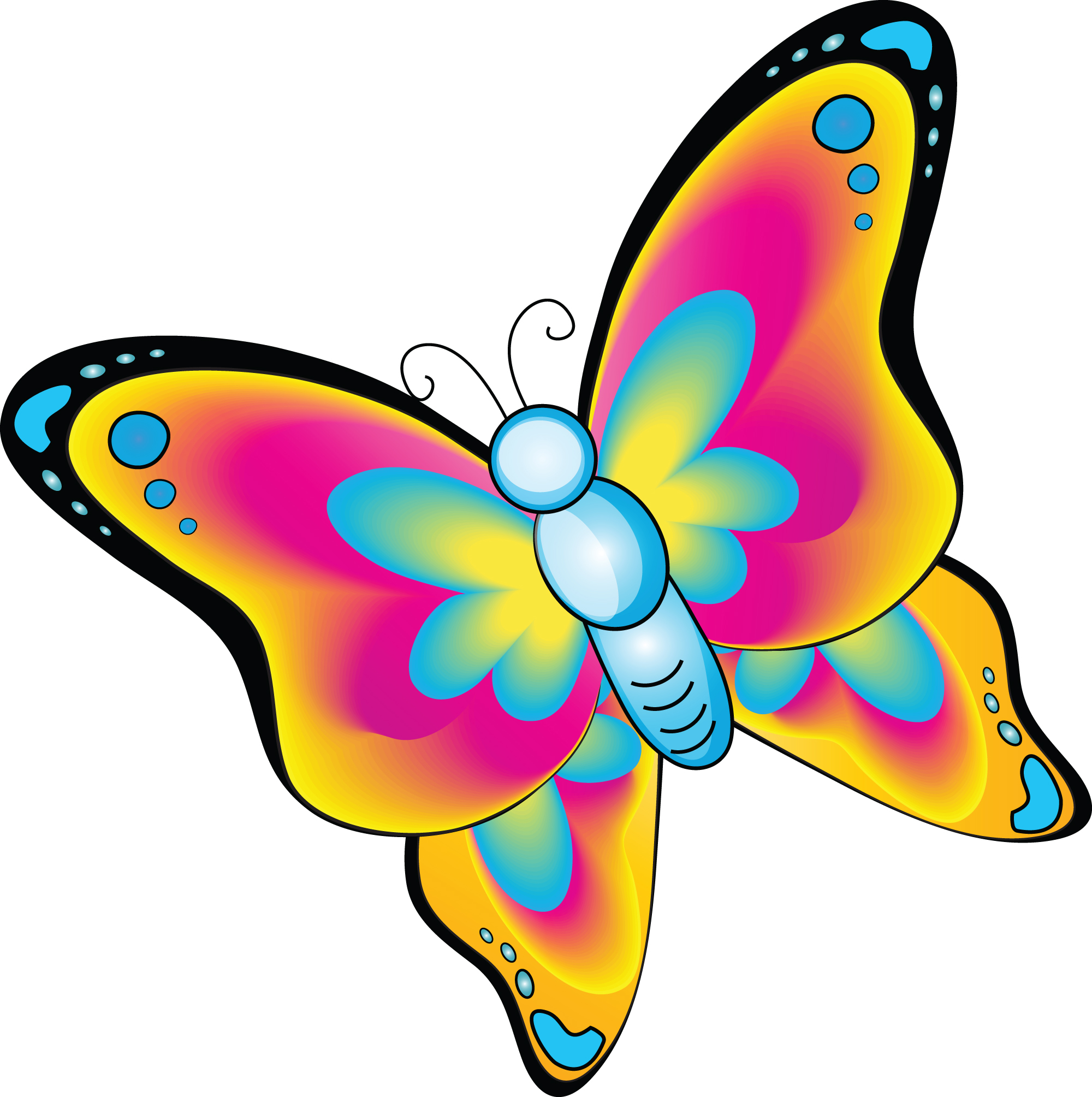 Free animated butterfly clipart clip Animated Butterfly Clipart - ClipArt Best clip