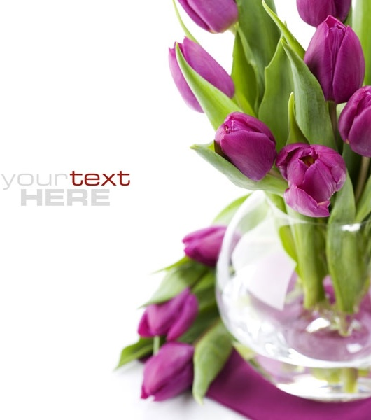 Free background images flowers png free download Flowers background free stock photos download (18,236 Free stock ... png free download