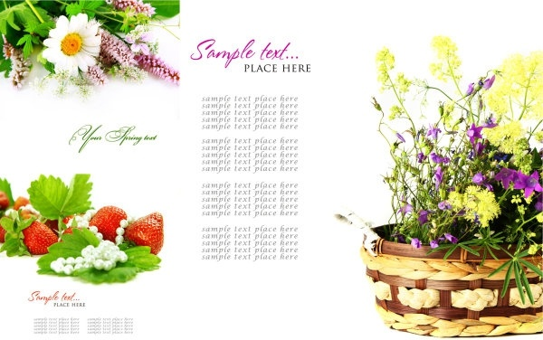 Free background images flowers banner royalty free Flowers background free stock photos download (18,236 Free stock ... banner royalty free