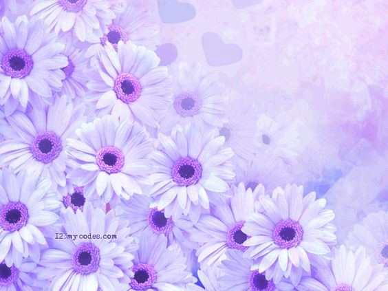 Free background pictures of flowers clip art transparent stock 17 Best images about Backgrounds Flowers | Flower wallpaper, Other ... clip art transparent stock