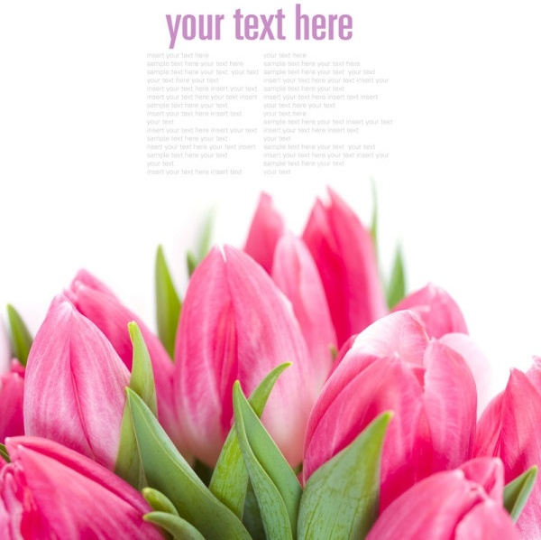 Free background pictures of flowers freeuse stock Flowers background free stock photos download (18,236 Free stock ... freeuse stock