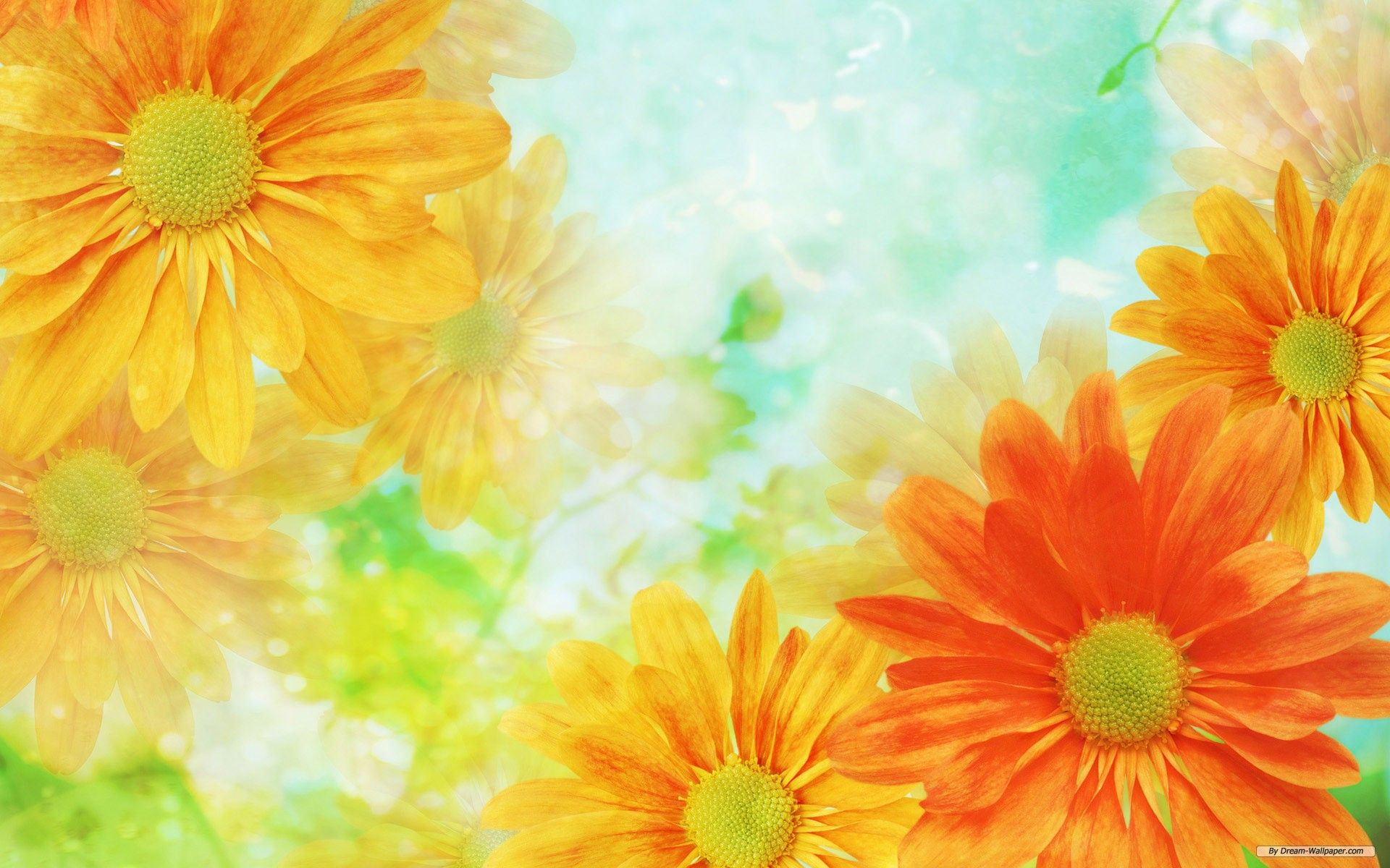 Free background pictures of flowers picture royalty free stock Free Best Wallpaper Images Flowers Background picture royalty free stock