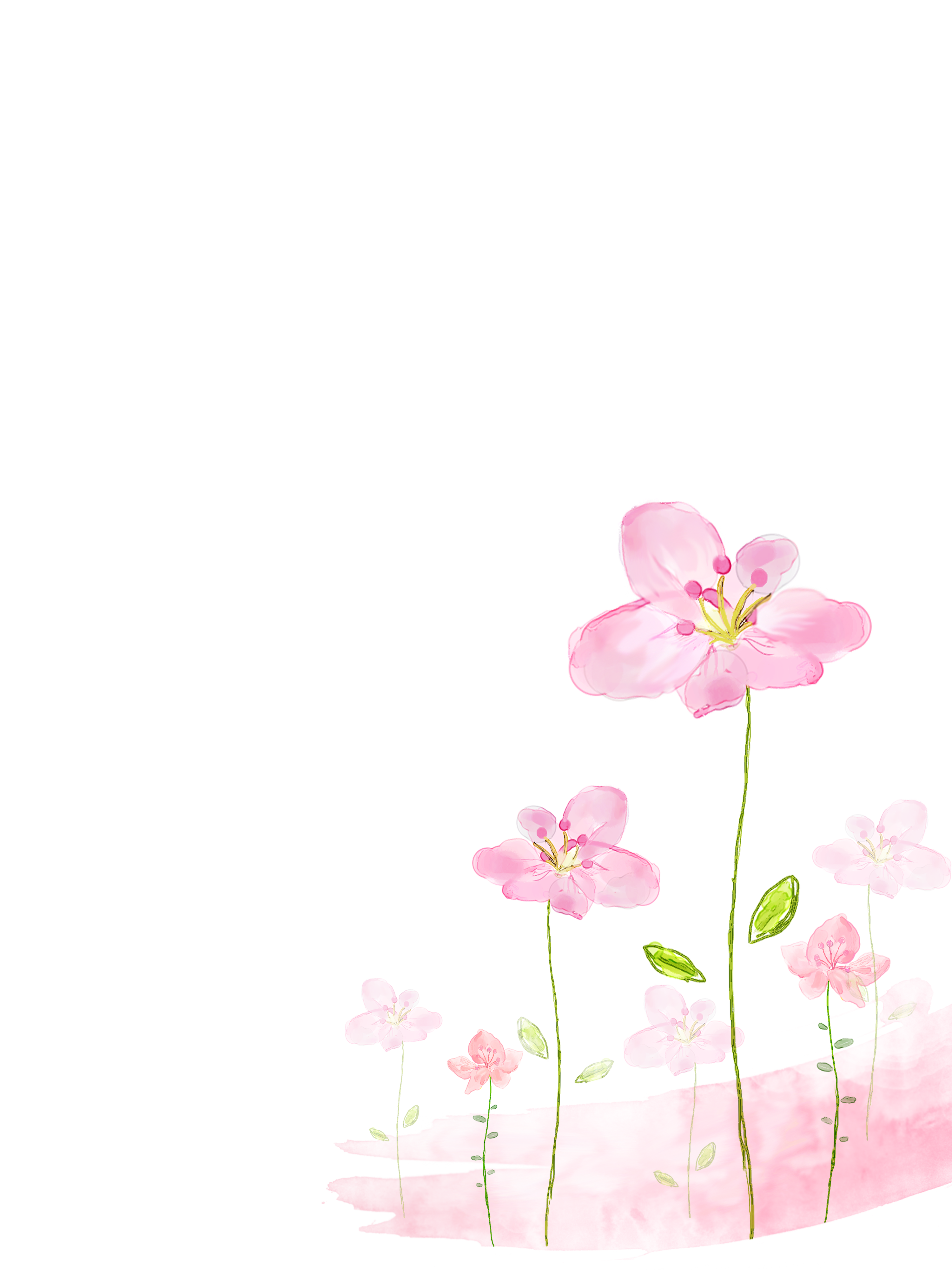Free background pictures of flowers jpg royalty free Watercolor painting Flower - Pink flowers background 3000*4000 ... jpg royalty free