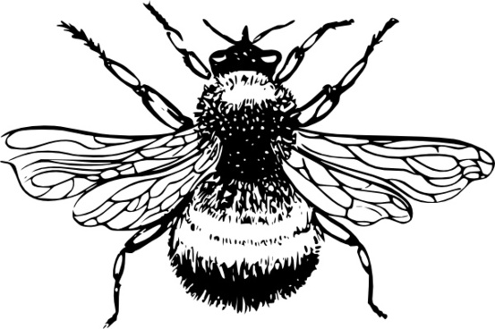 Free bee clipart for commercial use black and white Free Premium Cliparts - ClipartFest black and white