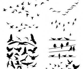 Free bird silhouette clipart picture library stock Free Bird Vector | Free Download Clip Art | Free Clip Art | on ... picture library stock