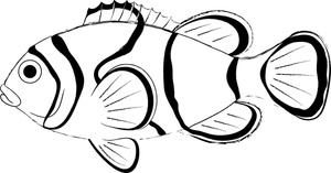 Free black and white clipart for clown fish graphic transparent download Fish black and white clown fish clip art black and white free ... graphic transparent download