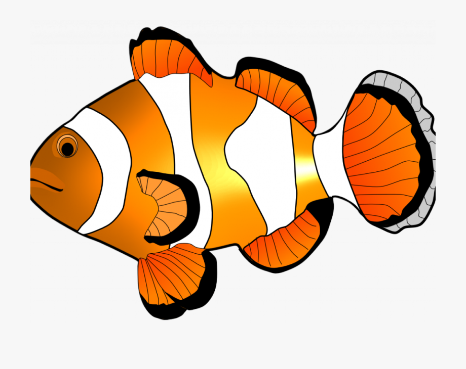 Free black and white clipart for clown fish clip royalty free download Peaceful Design Ideas Clip Art Fish Clipart Free - Clown Fish ... clip royalty free download