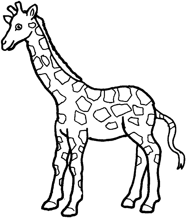 Free black and white clipart for giraffe. Outline cliparts download clip