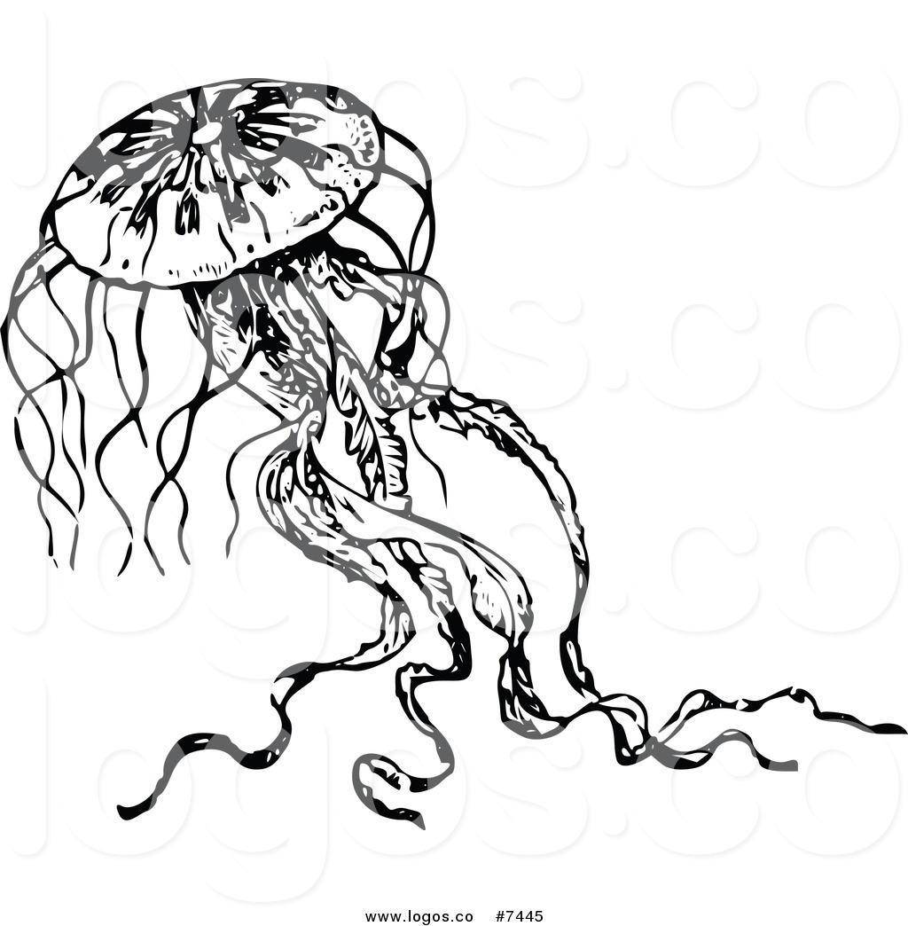 Free black and white clipart for jellyfish graphic royalty free Royalty Free Clip Art Vector Logo of a Black and White Jellyfish by ... graphic royalty free