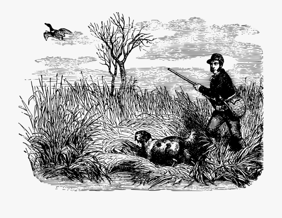 Free black and white clipart images duck hunting banner royalty free Duck Mallard Waterfowl Hunting Drawing - Bird Hunting Drawing ... banner royalty free