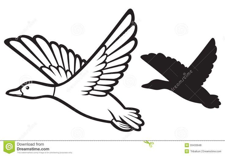 Free black and white clipart images duck hunting vector transparent stock Duck Hunting Clipart | Free download best Duck Hunting Clipart on ... vector transparent stock