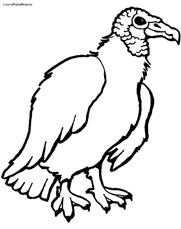 Free black and white clipart of a vulture. Coloring pages places to
