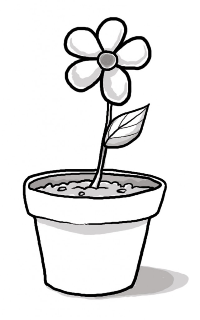 Free black and white clipart of trees planted in buckets picture transparent download Black And White Plant Clipart | Free download best Black And White ... picture transparent download