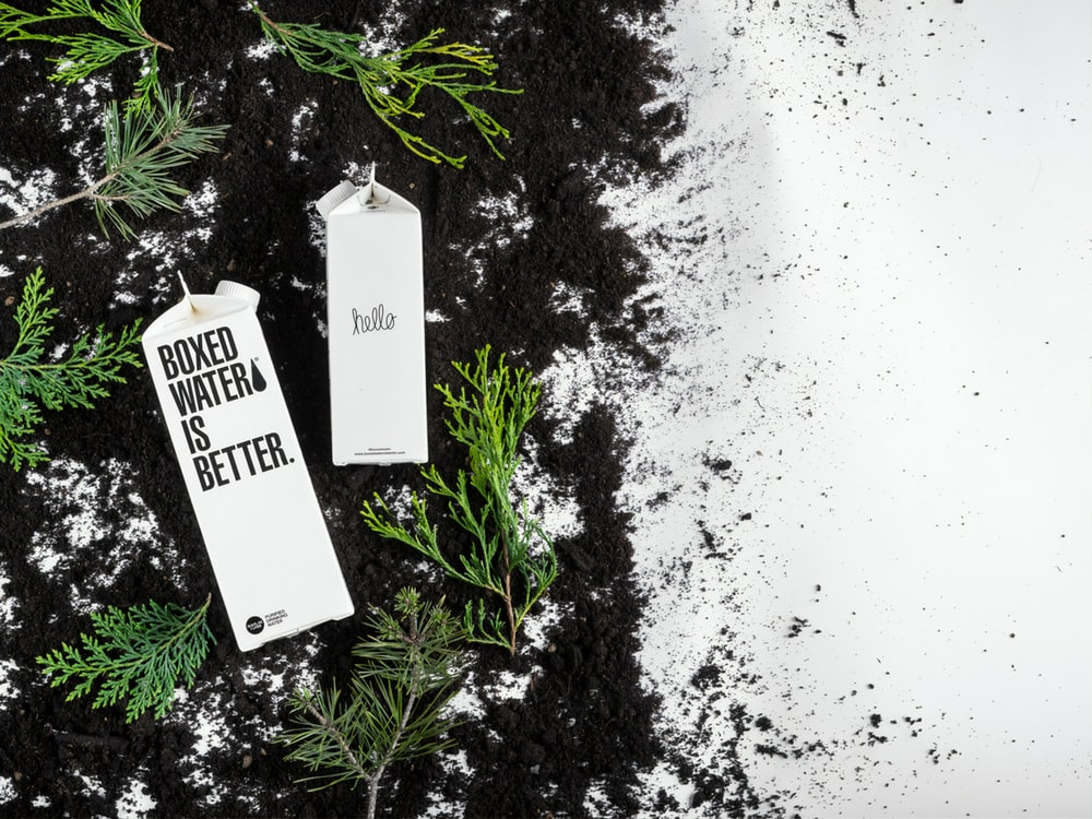 Free black and white clipart of trees planted in buckets clip black and white stock 20+ Free Plant Images on Unsplash clip black and white stock