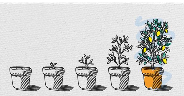 Free black and white clipart of trees planted in buckets picture black and white stock Clipart resolution 600*315 - growing plant black and white clipart ... picture black and white stock