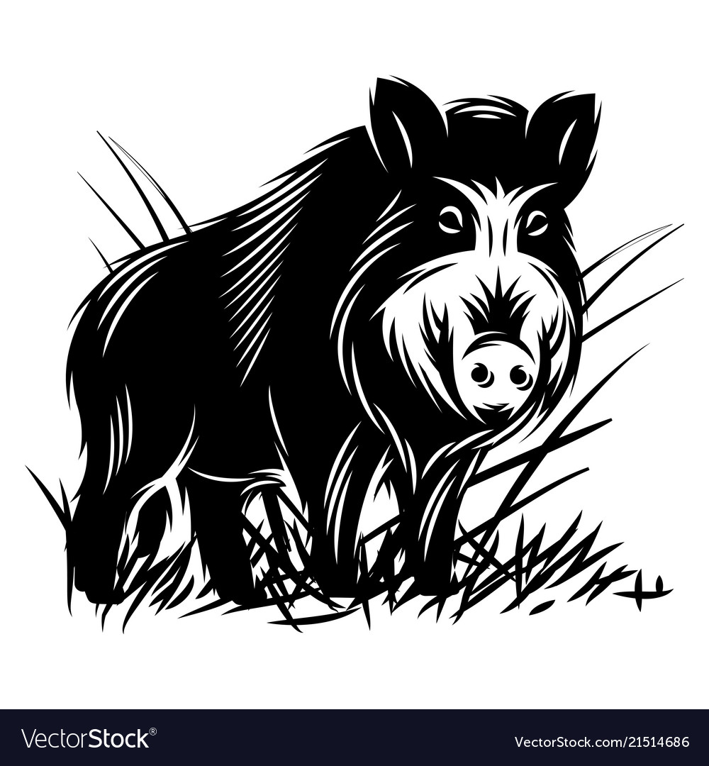 Free black and white clipart of wild boars picture transparent stock Monochrome with a wild boar in picture transparent stock