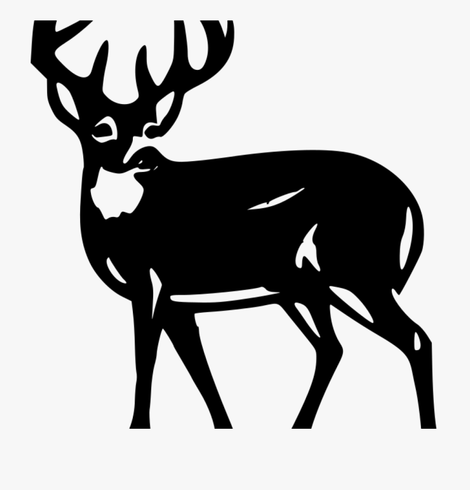 Free black and white deer clipart clipart transparent stock Deer Silhouette Clip Art White Deer Silhouette - Silhouette White ... clipart transparent stock