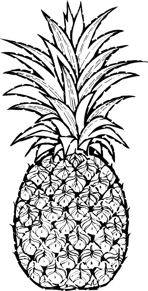 Picture of pineapple clipart black and white