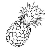 Picture of pineapple clipart black and white clip art freeuse stock Pineapple Black And White | Free download best Pineapple Black And ... clip art freeuse stock