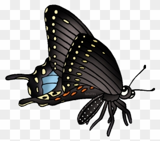 Free black swallowtail clipart clip freeuse download Logo \' - Swallowtail Butterfly Clipart (#3368909) - PinClipart clip freeuse download