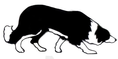 Free border collie clipart clipart freeuse library Border Collie Clipart | Free download best Border Collie Clipart on ... clipart freeuse library