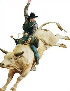 . Free bull riding clipart