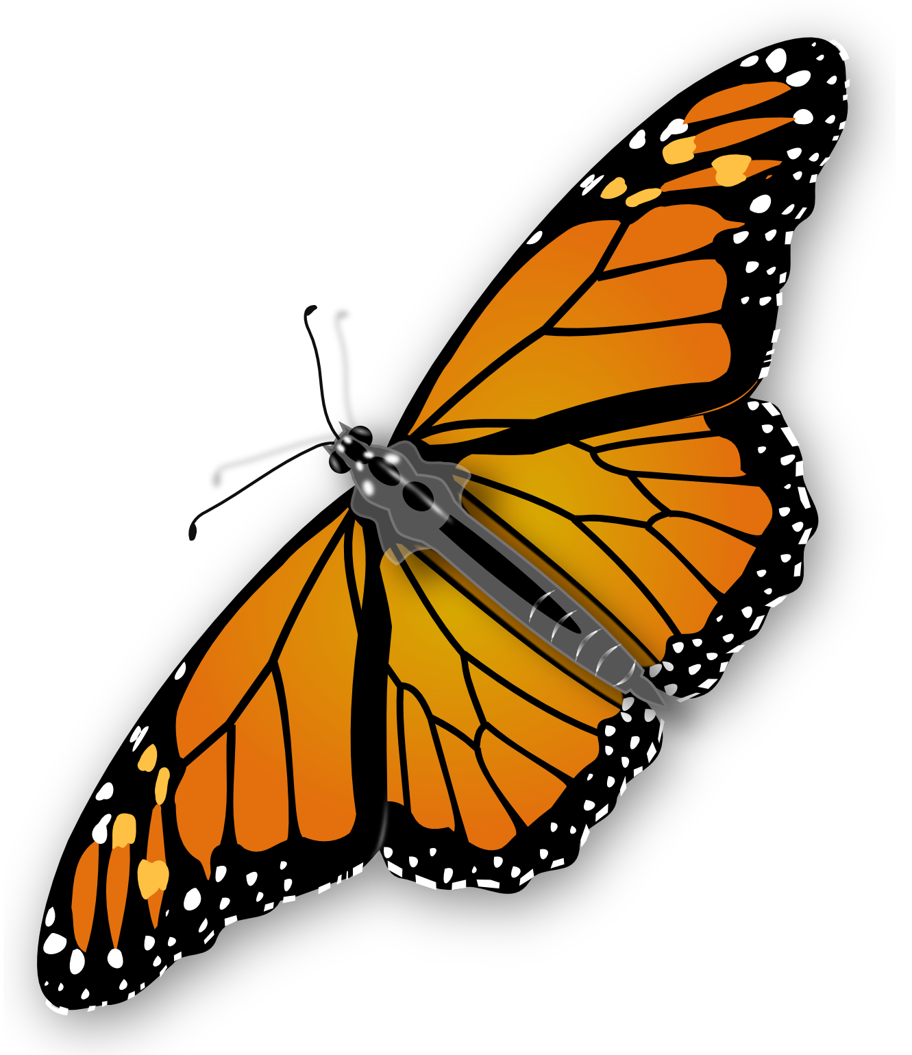 Free butterfly clipart png png free library Butterfly PNG image, free picture download png free library