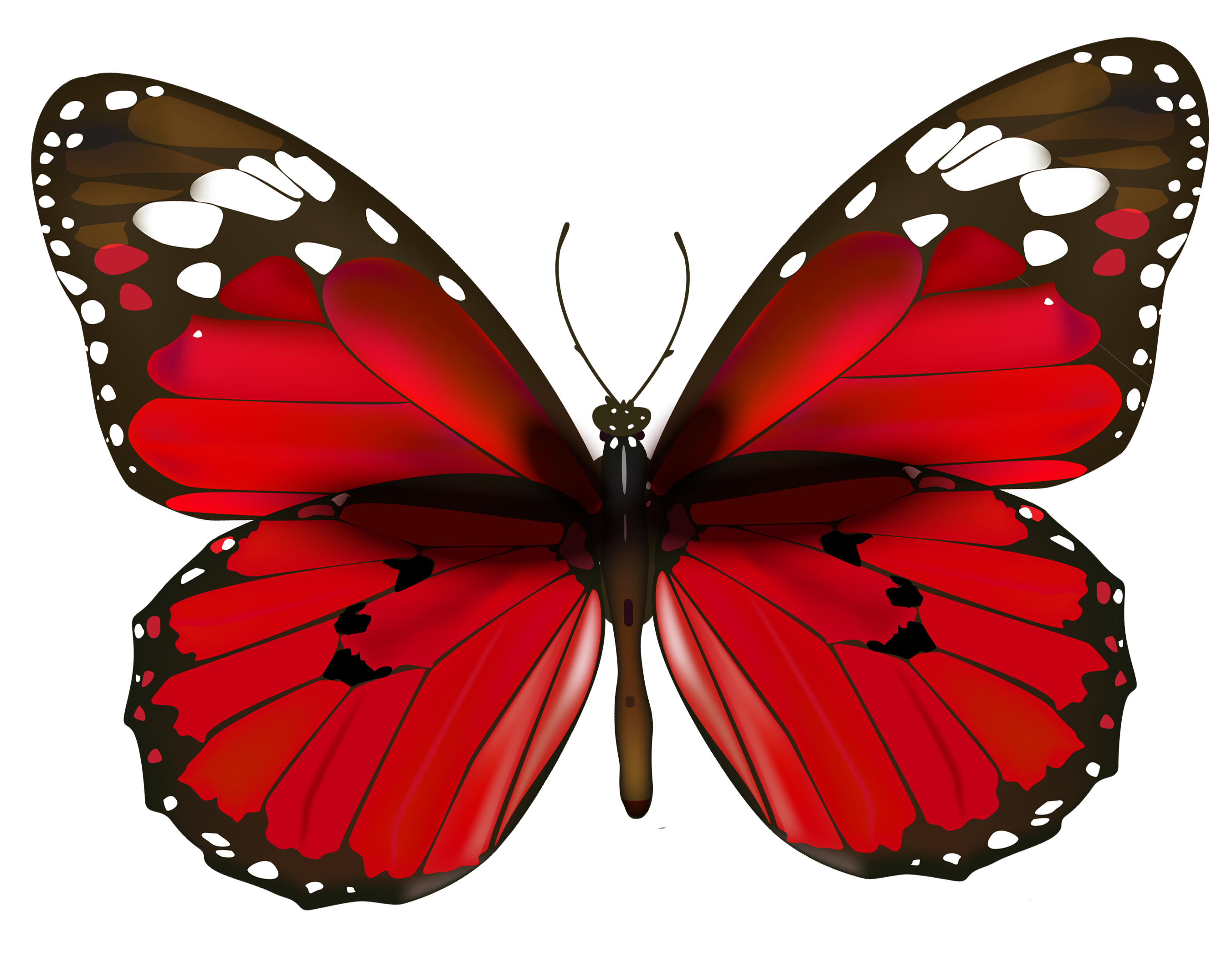 Free butterfly clipart png graphic black and white stock Red Butterfly PNG Clipart graphic black and white stock
