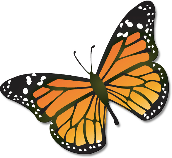 Free butterfly clipart png banner library Free butterfly clipart png - ClipartFest banner library