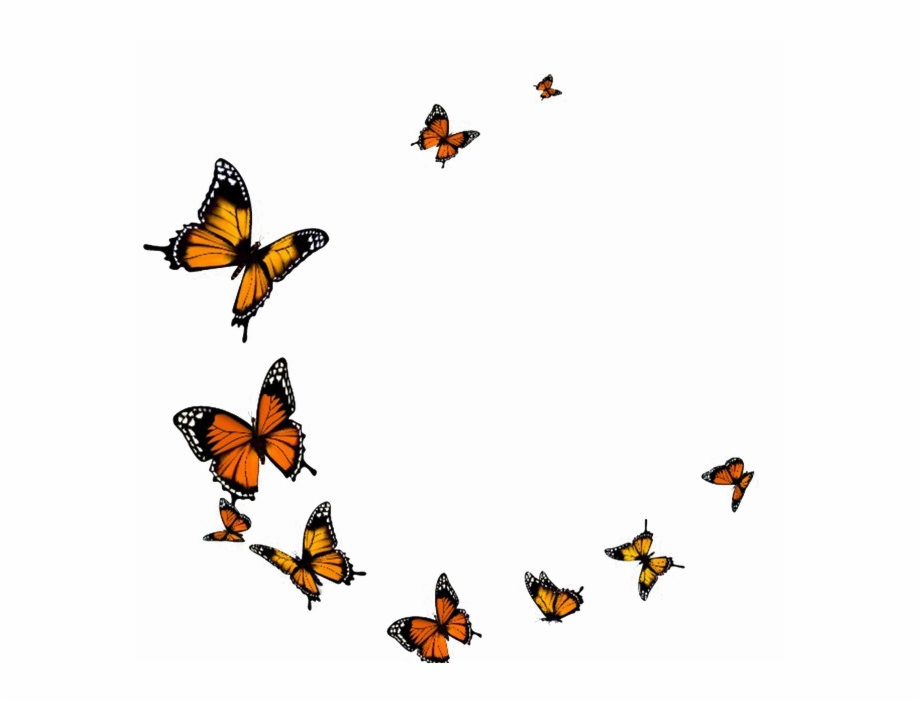 Free butterfly overlay clipart clip black and white library Flying Butterfly Png Transparent Image - Butterflies Png Free PNG ... clip black and white library