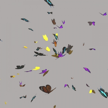 Free butterfly overlay clipart. Png vector psd and