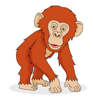 Free chimpanzee clipart jpg freeuse library Free Chimpanzee Cliparts, Download Free Clip Art, Free Clip Art on ... jpg freeuse library