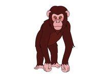 Free chimpanzee clipart graphic freeuse download Free Chimpanzee Clipart - Clip Art Pictures - Graphics - Illustrations graphic freeuse download