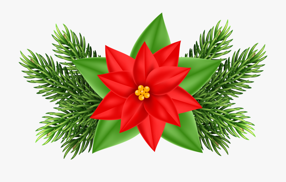 Free christmas poinsettia border clipart. Ornaments clip art png