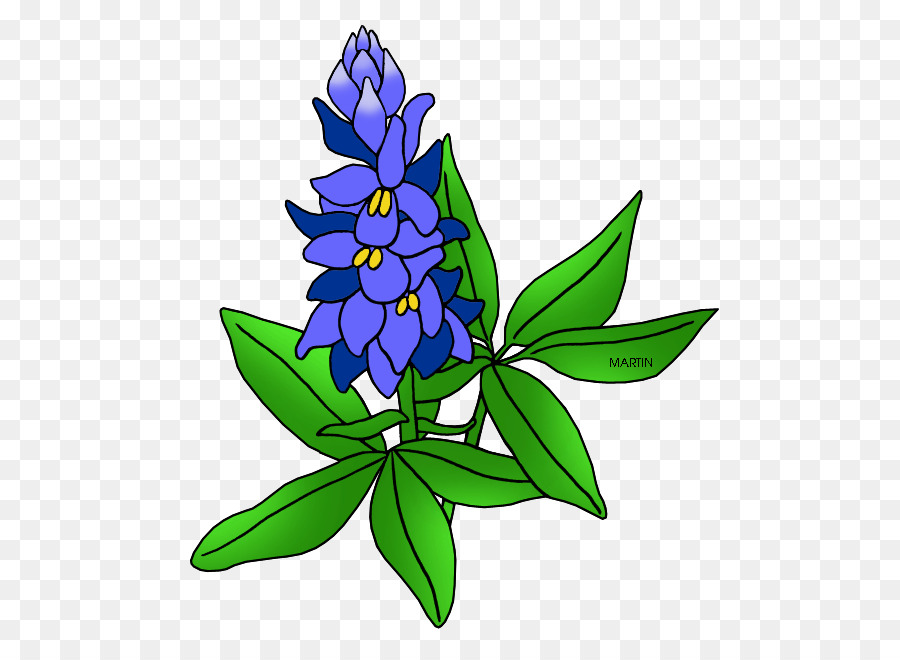 Free clipart and free downloads of bluebonnets free library Flowers Clipart Backgroundtransparent png image & clipart free download free library