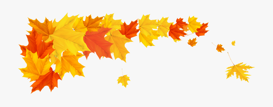 Free clipart autumn leaves with musical notes banner transparent library Fall Weekly Digest - Fall Leaves Border Png #580112 - Free Cliparts ... banner transparent library