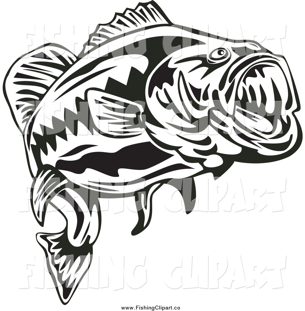 Largemouth download best . Free large mouth bass chasing a lure clipart