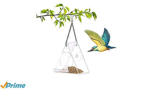 Free clipart bird sitting on empty feeder png free stock Amazon.com : Acrylic Barn Bird Feeder Window Perching House Hanging ... png free stock